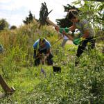 21-rodendan-parka-proslavljen-uz-dvodnevni-program-12