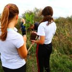 21-rodendan-parka-proslavljen-uz-dvodnevni-program-21