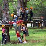 21-rodendan-parka-proslavljen-uz-dvodnevni-program-39