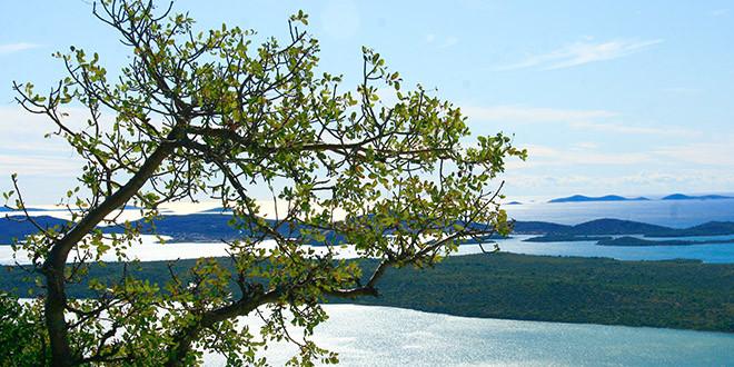 Odluke o poništenju natječaja za radno mjesto čuvar prirode III. vrste i radno mjesto voditelj Odsjeka za posjetitelje, promidžbu i turističku djelatnost