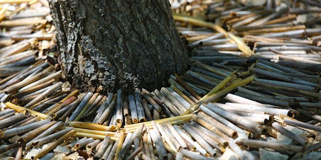 Izložba fotografija povodom Svjetskog dana zaštite okoliša