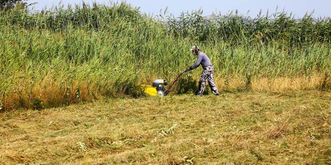 Kasna košnja za očuvanje vlažnih livada na Vranskom jezeru