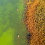medunarodni-dan-bioraznolikosti-i-dan-zastite-prirode-08