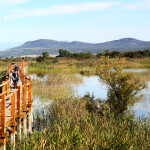 medunarodni-dan-bioraznolikosti-i-dan-zastite-prirode-09