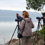 monitoring_ptica_vodarica_zimovalica_07