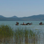 novo-adrenalinsko-uzbudenje-u-parku-prirode-vransko-jezero-04