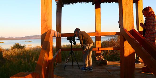 Obilježavanje Dana Parka, Europskog dana promatranja ptica i Svjetskog dana ptica selica