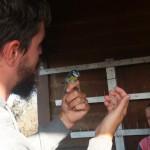 odrzani-treninzi-promatranja-ptica-mali-prstenovacki-kamp-te-izrada-kucica-za-ptice-19