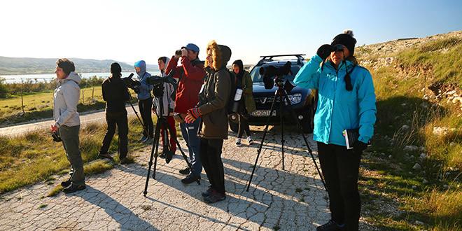Održani Treninzi promatranja ptica, Mali prstenovački kamp te izrada kućica za ptice