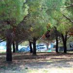 otvorenje-adrenalinskog-parka-u-parku-prirode-vransko-jezero-19