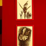 postavljena-izlozba-u-muzeju-grada-zadra-11