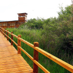 projekt-revitalizacija-i-povezivanje-atrakcija-parka-prirode-vransko-jezero-obogacuje-ponudu-i-sadrzaj-parka-prirode-vransko-jezero-13