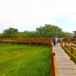 projekt-revitalizacija-i-povezivanje-atrakcija-parka-prirode-vransko-jezero-obogacuje-ponudu-i-sadrzaj-parka-prirode-vransko-jezero-15