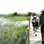 promatranje-ptica-u-pp-vransko-jezero-za-sve-posjetitelje