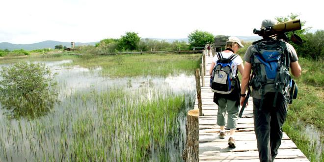 Promatranje ptica u PP Vransko jezero za sve posjetitelje!