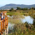 proslavite-s-nama-20-rodendan-parka-europski-dan-promatranja-ptica-i-svjetski-dan-ptica-selica-09