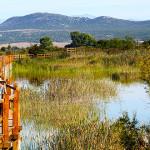 proslavite-s-nama-20-rodendan-parka-europski-dan-promatranja-ptica-i-svjetski-dan-ptica-selica