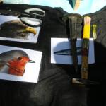 proveden-edukativni-program-na-temu-ptica-27