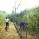 prstenovacki-kamp-pracenje-jesenske-migracije-ptica-01