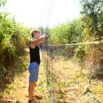 prstenovacki-kamp-pracenje-jesenske-migracije-ptica-04