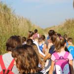 skola-prstenovanja-u-ornitoloskom-rezervatu-09