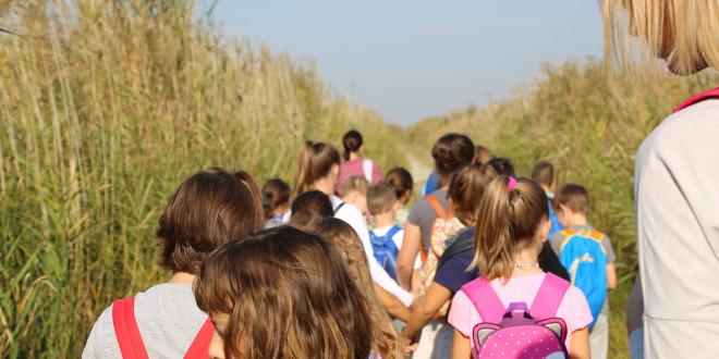 Škola prstenovanja u Ornitološkom rezervatu