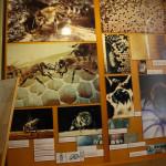 studijsko-putovanje-u-sklopu-projekta-biosfera-14