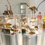 tajne-muzejskih-cuvaonica-vode-06