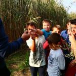 ucenici-proslavili-dan-parka-prirode-vransko-jezero-na-maloj-skoli-prstenovanja-02