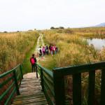 ucenici-proslavili-dan-parka-prirode-vransko-jezero-na-maloj-skoli-prstenovanja-11