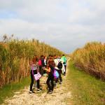 ucenici-proslavili-dan-parka-prirode-vransko-jezero-na-maloj-skoli-prstenovanja-12