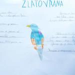 ususret-proljetnim-migracijama-online-izlaganje-ucenickih-radova-07