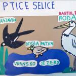 ususret-proljetnim-migracijama-online-izlaganje-ucenickih-radova-14