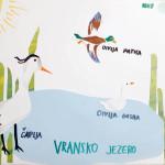 ususret-proljetnim-migracijama-online-izlaganje-ucenickih-radova-15