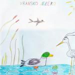 ususret-proljetnim-migracijama-online-izlaganje-ucenickih-radova-18