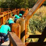 volonterska-akcija-na-vranskom-jezeru-grawe-na-djelu-03
