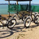 vransko-jezero-raj-za-zahtjevno-bicikliranje
