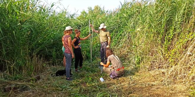 Započeo ornitološki kamp u rezervatu Vranskog jezera